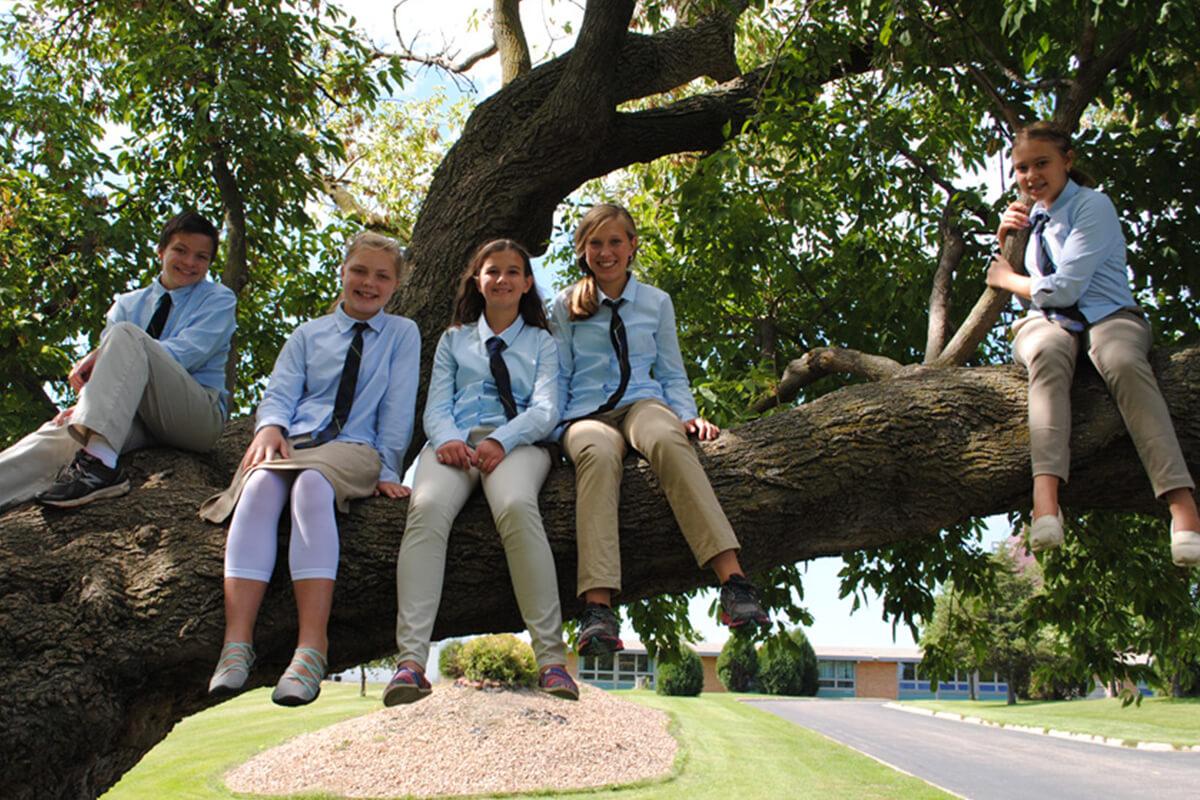 Montessori students in tree